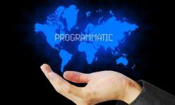 konference-programmatic